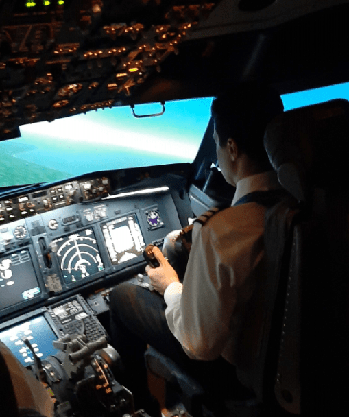 90 minute Flight Simulator Experience  A unique gift experience